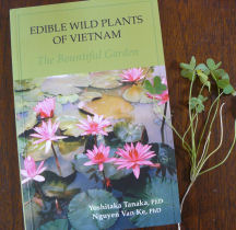 Books-edible wild plants of vietnam