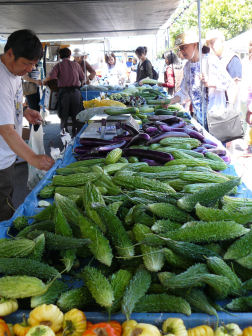 Oakland_farmers_marketj07