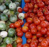 Thai_eggplant_cherry_tomato_2