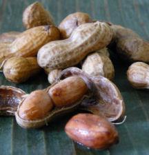 Boiled_peanuts_6